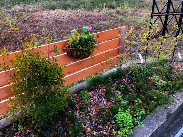 花壇フェンス3